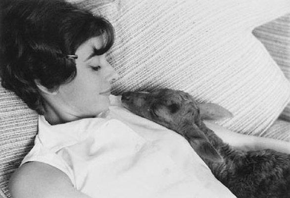 Audrey Hepburn (4)